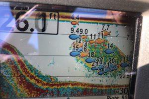 10月3日またまた台風後のガイド練習で魚探掛けまくりで探しまくりで・・・でも結構厳しい感じ