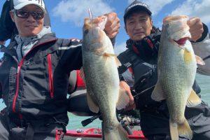 今日の琵琶湖ガイドは大阪からの3名様でもう常連状態の大場さん、三野さん、曽我さんもちろん皆さん今噂のウェンティーで釣りたい!御存知ない方の為に説明しますとジャスターフィッシュ2.5とカルティバスイングヘッド0.9gフロロカーボンライン3ポンドでワカサギパターンでビッグバスを狙う釣り方でめっちゃ楽しい釣りです。それをご所望ですが・・・台風直後ですからチョット不安の中をスタート