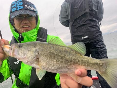 1日遅れ更新10月18日琵琶湖ガイドはやっぱり冷たい雨は苦戦です!ジャスターフィッシュ2.5と3.5をDSで数はマヂ無限でビッグが難しい