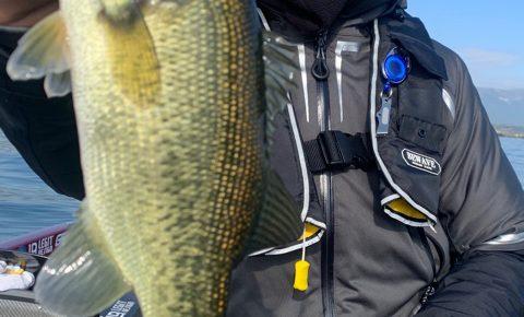 11月16日琵琶湖ガイドはナイスキーパーはやっぱりジャスタークローラー4.7のネコリグで沢山釣れました!