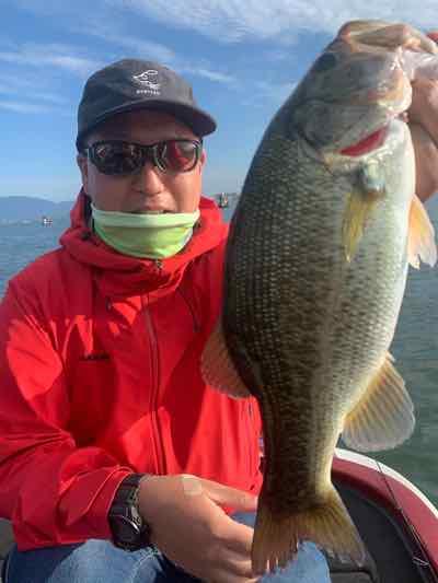 10月7日琵琶湖ガイドはジャスターフィッシュ2.5DSとワイルドサイドST65Lでの数釣りからジャスターホッグTXと610MHのサイズ狙いで頑張りました!