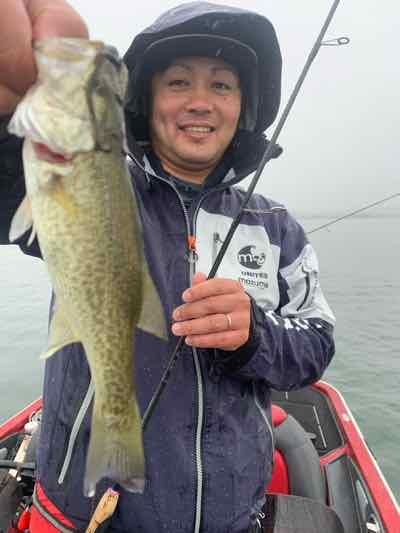 11月7日琵琶湖ガイドは冷たい雨の中でサイズアップが難しかった1日