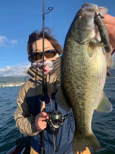 11月10日琵琶湖ガイドはGETNETジャスターフィッシュ3.5DSをワイルドサイドST65Lで数釣り!2人で30本以上!