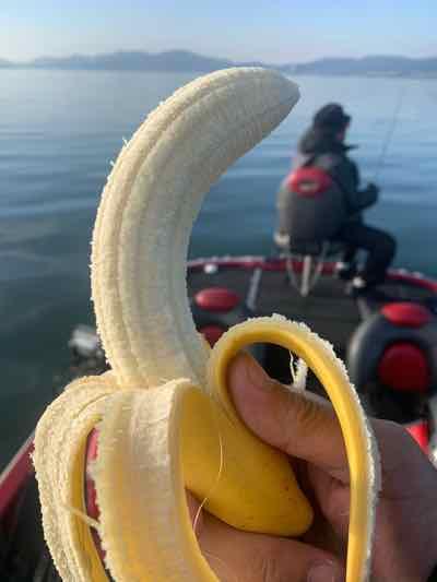 11月27日琵琶湖ガイドは顔出しNGゲスト様と数釣りで40本超!