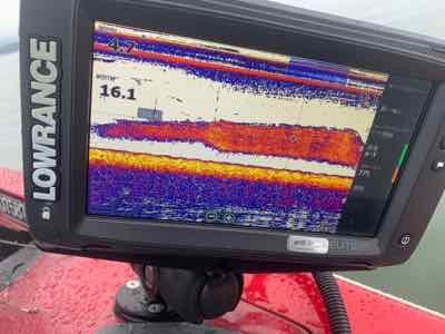 5月5日琵琶湖ガイドは雨の中で苦戦!ジャスターフィッシュ3.5DSとジャスターホッグ4.3TX7gでキャッチ!